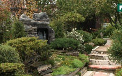 Сад Бонсай — Япония на дачном участке. Создан своими руками //FORUMHOUSE