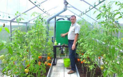 Умная теплица своими руками. Как автоматизировать выращивание овощей //FORUMHOUSE